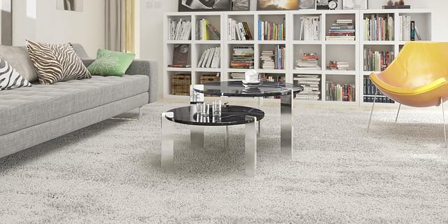 tauranga carpet cleaner