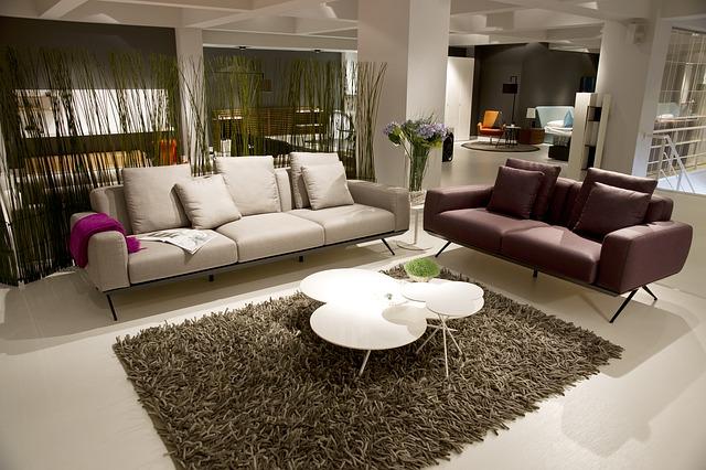 upholstery cleaning tauranga